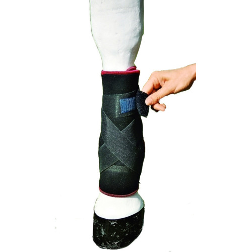 aet tsm reha bandage fesselkopf vorne mit schleifschutz