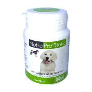 nutrapet system nutrapro® biotic canine hund ergänzungsfuttermittel