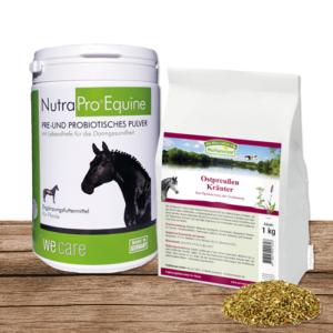 equisio-shop-winter-fit-aktion-paket-Horse-equine-preußische-kraeuter