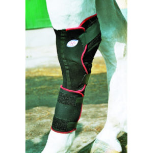 tsm reha sprunggelenk bandage equisio shop