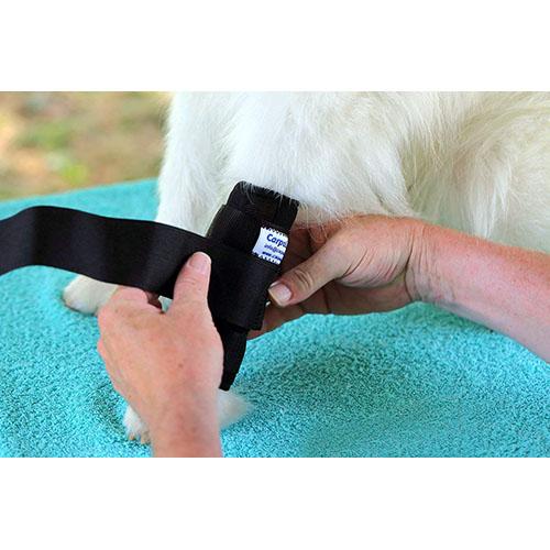 nature pet premium bandage hund equisio shop