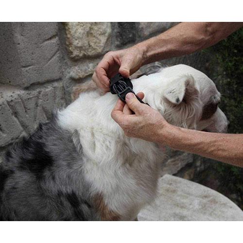 nature pet softmaulkorb hund equisio shop