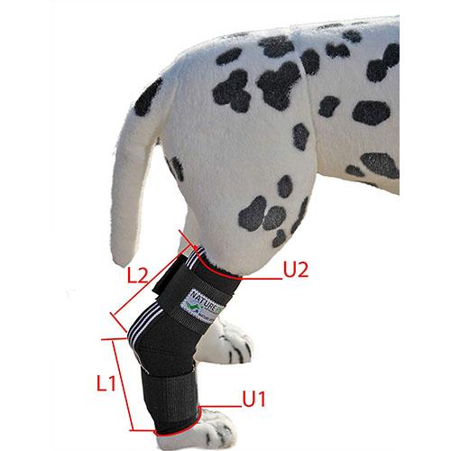 naturepet sprunggelenk tarsal bandage hund equisio shop