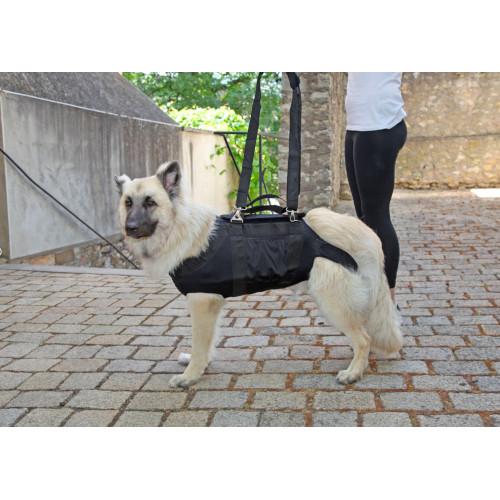 nature pet tragehilfe ganzkoerper hund equisio shop